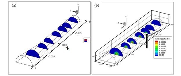 Two Phase Flow in a Converging-Diverging Duct: Result 1